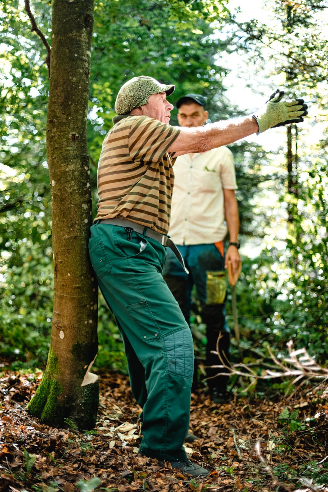 Ein alter Mann zeigt die Fallrichtung eines Baumes an